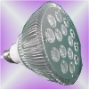 119- PAR38 led light bulb