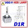 AUTO HID LAMP D1R, 6000k