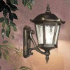 Classic led outdoor wall lighting DH-1711