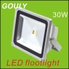 Color changing 30W outdoor led flood light