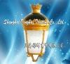 Electrodeless Garden Lamp RY506 100W