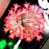 GNW outdoor decorative twinkle lights (str060)