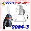 HID Lamp 8000K, 9004
