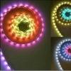 LED Flexible Strip Light 5050-RGB-MS-D07