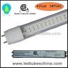 Lm80 347V CSA Approval LED Tube