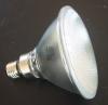PAR38 halogen lamp