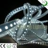 SMD3528 600 LEDS Flexible Strip