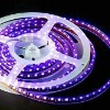 competitive price Flexible 3528 SMD LED Strip